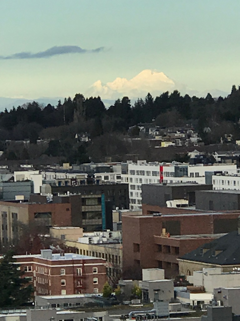 Distant snow-covered mountain on horizon. City in foreground.