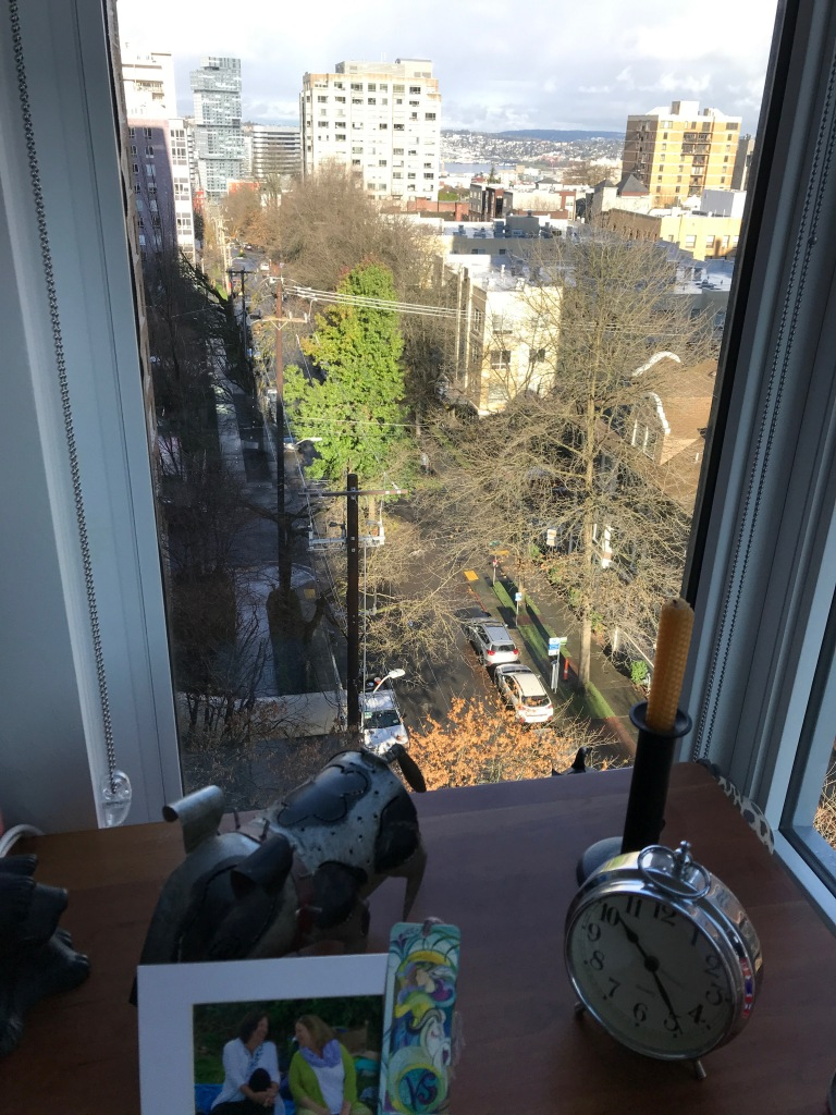 View out high window of street scene with leafless trees and one green, be-leafed tree in the middle of the street.