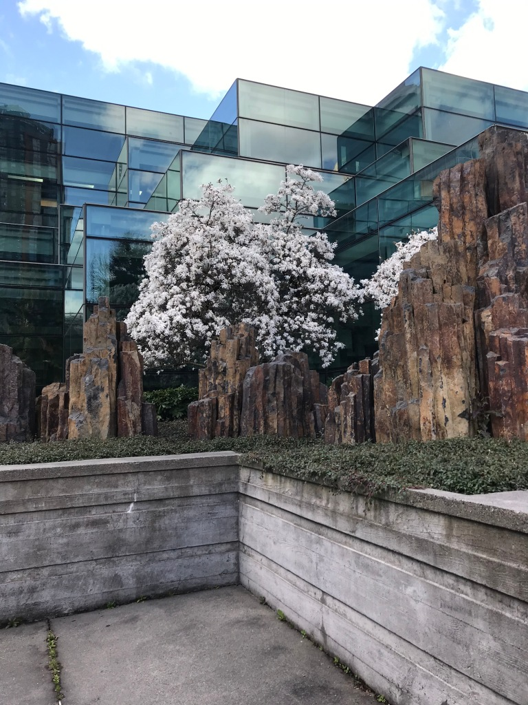 Geometric glass building with basalt sculptures and a blossoming tree in front of it.