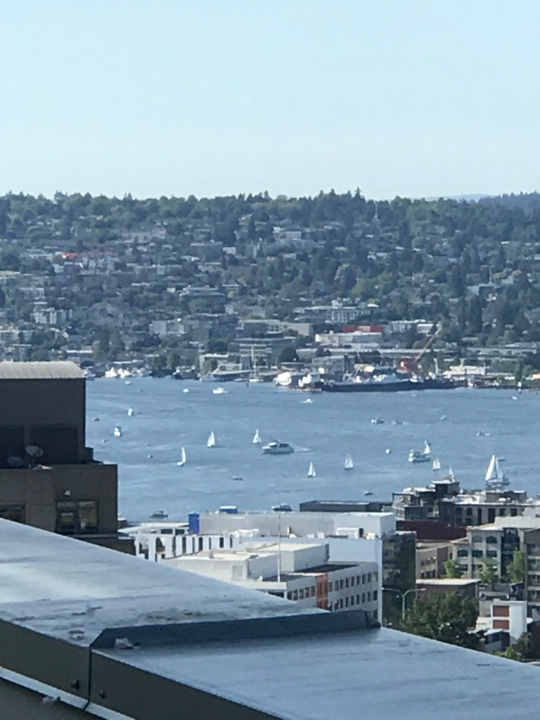 sailboats on lake in front of hillside desnsely covered with trees and buildings.